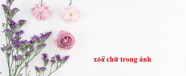 Dịch Vụ Chỉnh Sửa Ảnh Photoshop